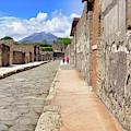 Mount Vesuvius And The Ruins Of Pompeii Italy by Robert Bellomy