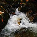 Mountain Water by Raymond Salani III