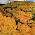 Mountainside Of Fall Color Along Last Dollar Road by Ray Mathis