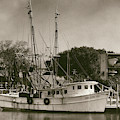 Mrs Judy Too - Shrimp Boat by Dale Powell