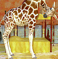 Ms Kitty And Her Giraffe  by Betsy Knapp