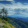 Mt Adams Seen From Mount St. Helens by Steve Estvanik