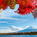 Mt. Fuji In Autumn by Esb Professional