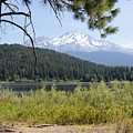 Mt Shasta And Lake Siskiyou In California R1650 by Wingsdomain Art and Photography
