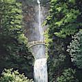 Multnomah Falls by Mary Palmer