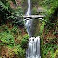 Multnomah Falls Sunday by Harriet Feagin