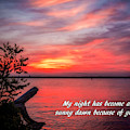 My Night Has Become A Sunny Dawn by Nick Zelinsky