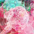 Nano Flower Bud by David Derr
