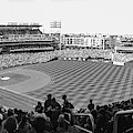 Nationals Park Pano Bw by Jeremy Guerin
