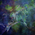 Natures Filigree 9419 Idp_2 by Steven Ward