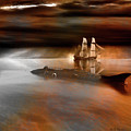 Nautilus by Michael Cleere