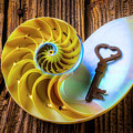 Nautilus Shell And Old Key by Garry Gay