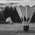 Nelson Atkins Shuttlecocks - Kansas City Monochrome by Gregory Ballos
