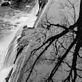 Nemasket River II Bw by David Gordon