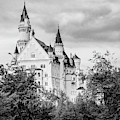 Neuschwanstein Castle In Black And White by Borja Robles