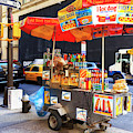 New York City Dogs by John Rizzuto
