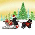 Newfoundland Dog Christmas by Christine Mullis