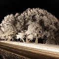 Night Of The Hoar Frost by David Matthews