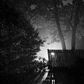 Night Shower by John Meader