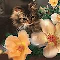 No. 5. Cat Portrait by Ryn Shell
