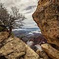 North Rim Fog 1 - Grand Canyon National Park - Arizona by Brian Harig