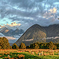 Nothing To See Just Landscape With Sheep In Nz  New Zealand South Island Panorama By Olena Art by OLena Art Brand