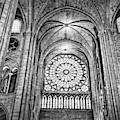 Notre Dame Cathedral Black And White by Kay Brewer