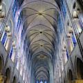 Notre Dame De Paris - A View From The Floor by Rick Locke