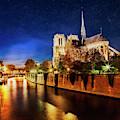 Notre Dame by Scott Kemper