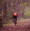 November Ride by Jack Wilson