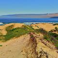 Oceano Dunes by Greg Norrell