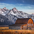 October Teton Barn by Chris Steele