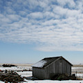 O'keefe Winter Shed by Dylan Punke