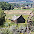 Old Barn In The Valley by Tammie J Jordan
