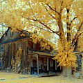 Old Farm House In Infrared by Paul W Faust - Impressions of Light