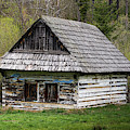 Old Log Home With Wooden Shingles by Les Palenik