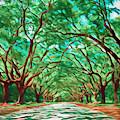Old Oak Avenue South Carolina by Dan Sproul