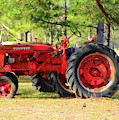 Old Red Farmall by Cynthia Guinn