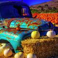 Old Rodoni Farm Truck by Garry Gay
