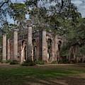 Old Sheldon Church Ruins - Live Oaks by Dale Powell