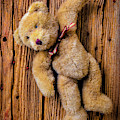 Old Teddy Bear Hanging On The Door by Garry Gay