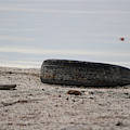 Old Tire On Shore Of Salton Sea by Colleen Cornelius