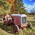 Old Tractor by Susan Rissi Tregoning