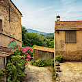 old village near La Castelet by Ariadna De Raadt
