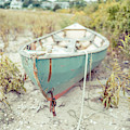 Old Wooden Skiff Hyannis Port Cape Cod by Edward Fielding
