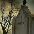Ominous Clouds Surround Crow by Gothicrow Images