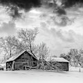 On A Winter Day Monochrome by Steve Harrington