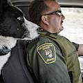 On Patrol by Brad Allen Fine Art