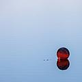On The Lake by Barbara Friedman