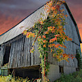 Once Upon An Autumn Barn by Lynn Bauer